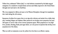 notitle Information Card 2-What is Yellow Fever.jpg